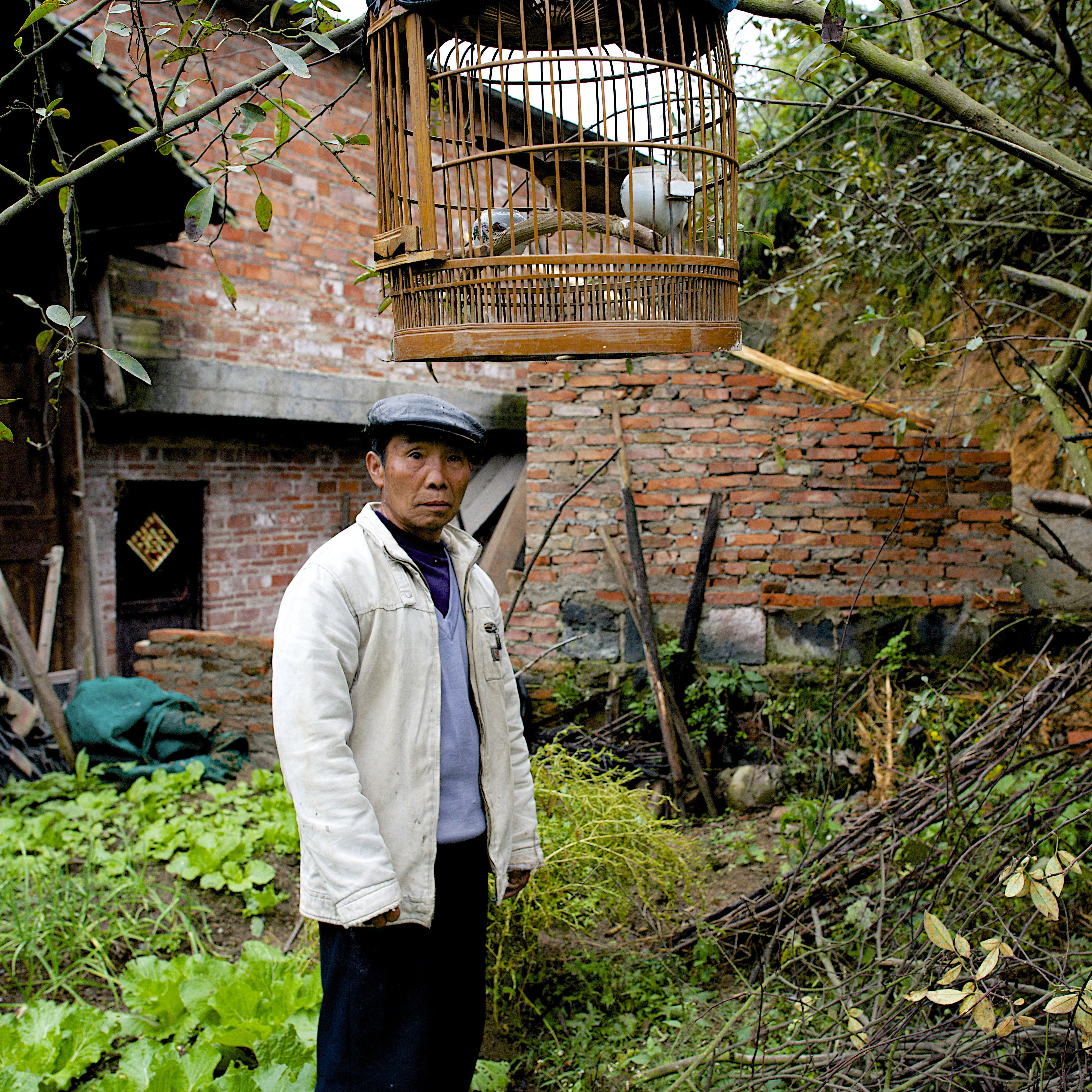 A man pauses from weeding to listen to the songbird he carried to his garden in the Shui Dian village.