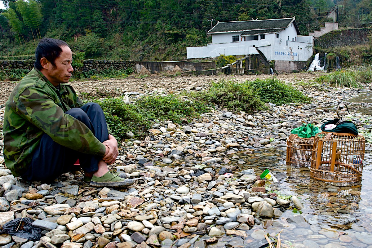 A heavy equipment operator watches his songbirds enjoy the cool water of a stream in the  Shui Dian village.