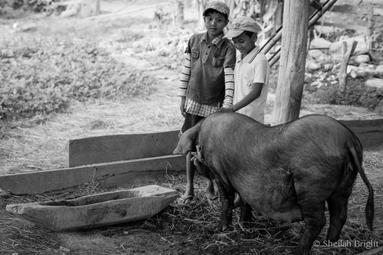 Two boys pose with the family pig in a tiny village in Myanmar.