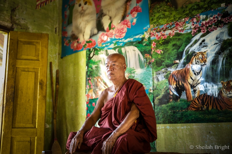 Proud of his feline wall, a monk asks for a portrait.