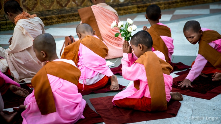 At the Shwedagon Pagoda, a student prays with flowers in hand.