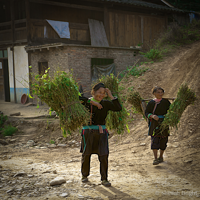 Chinese mothers return from the fields with the day's harvest.