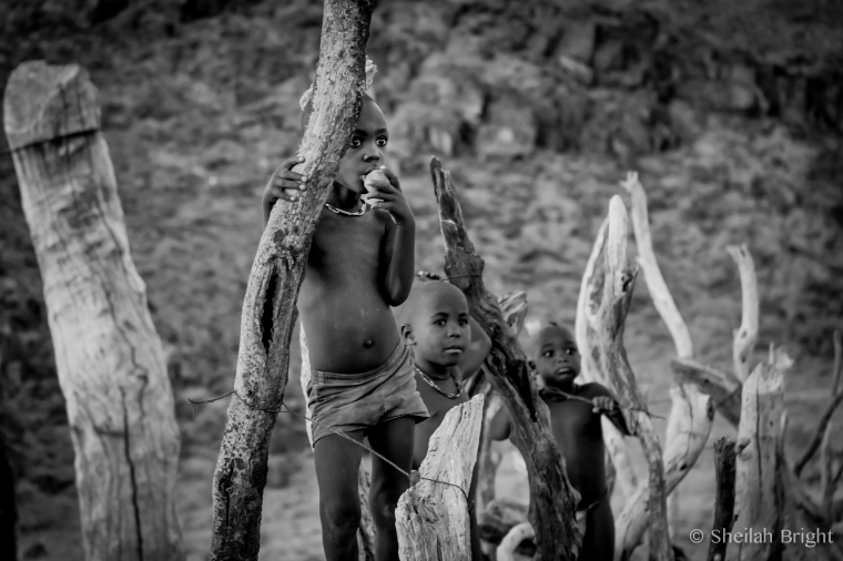 Himba boys stand on the driftwood fence surrounding their tiny village.